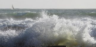 dimar-vientos-y-oleaje-mar-caribe